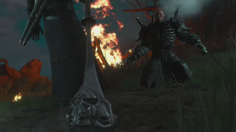 LORD2206 playing The Witcher 3: Wild Hunt - Game of the Year Edition